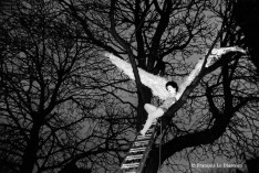 Ref ANGEL 5 – Street theater : the Palais des Merveilles, Paris