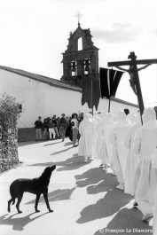 Ref CHRISTUS 16 – Procession of penitents in white with a black dog at Berciano de Aliste (Zamora), Spain