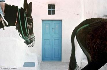 REF BLUE GREECE 1 – 2 donkeys, Kalamos island