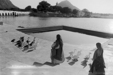 Ref India 17 – Women with ducks at a small lake in Pushkar, Rajasthan, India