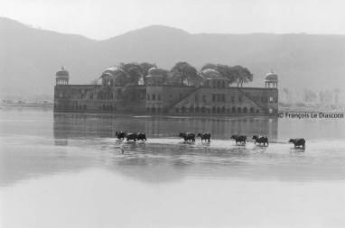 Ref India 4 – Lake Palace, Jaipur