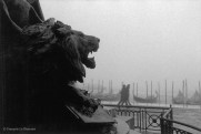 Ref VENICE 26 – Garibaldi Monument
