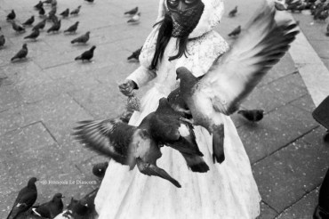 Ref VENICE 9 – Masked girl with pigeon