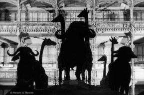 Ref Zoo 3 – The great nave of the Gallery of Zoology with silhouettes of water buffalo and giraffes