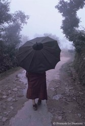 Ref BUDDHA 12 – Tibetan monk in the fog, McLeod Ganj, India