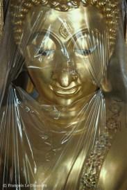 Ref BUDDHA 22 – A veiled Buddha, Wat Po Temple, Bangkok, Thailand