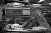 Ref Hospital 10 – Heart transplant, Rangueil Hospital, Toulouse France